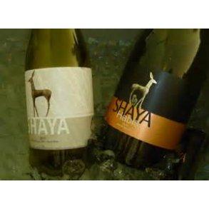 Bodegas Shaya - et af Ruedas bedste hvidvinshuse