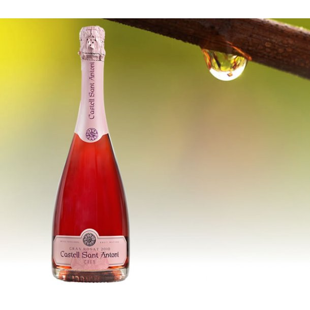 Gran Rosat Pinot Noir 2012